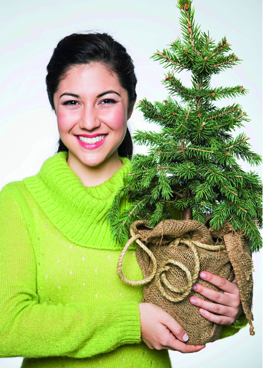 Living Christmas Trees: Go Green, Plant a Memory