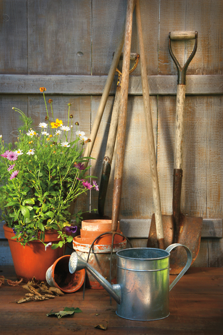 Time For A Tune-up: Caring for Your Garden Tools