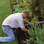 Lawn Care Pros: Ask The Right Questions When Hiring A Lawn Care Company