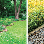 Framing Your Landscape | Choose the Right Border