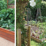 Elevate Your Game | The Benefits of Raised Gardening Beds
