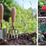 The Secret's in the Soil | Take the Guesswork out of Gardening by Doing a Soil Test