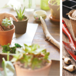 Plot Your Perfect Potting Spot | Create A Stylish, Practical Workbench For Your Garden Tools