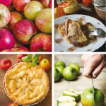 Recipes From The Orchard