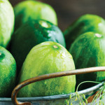 Cool, Crisp Cucumber | Refreshing Summer Recipes
