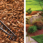 Mulch Matters | Protect and Prepare for the Next Growing Season