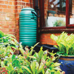 Water Works | Collect Rain for Garden Use