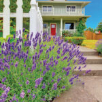 Spring Refresh | Choosing Paint for Your Home's Exterior
