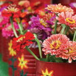 Summer Bouquet | Let Zinnias Work Magic in Your Garden