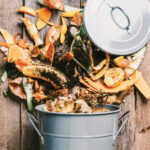 Composting Is Cool | Turn Kitchen Scraps into Garden Gold